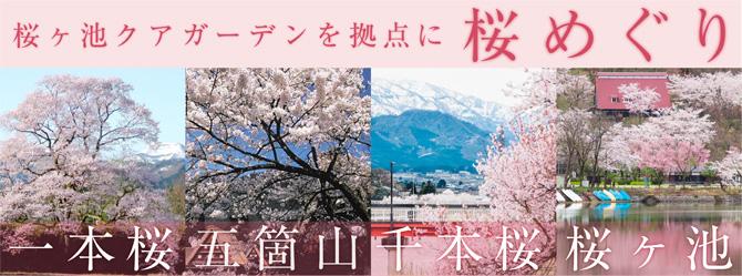 桜の名所めぐり
