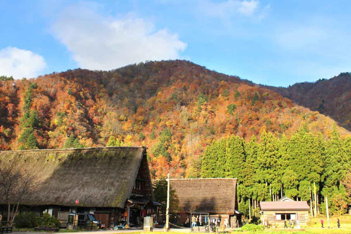 秋の五箇山・菅沼の合掌造り