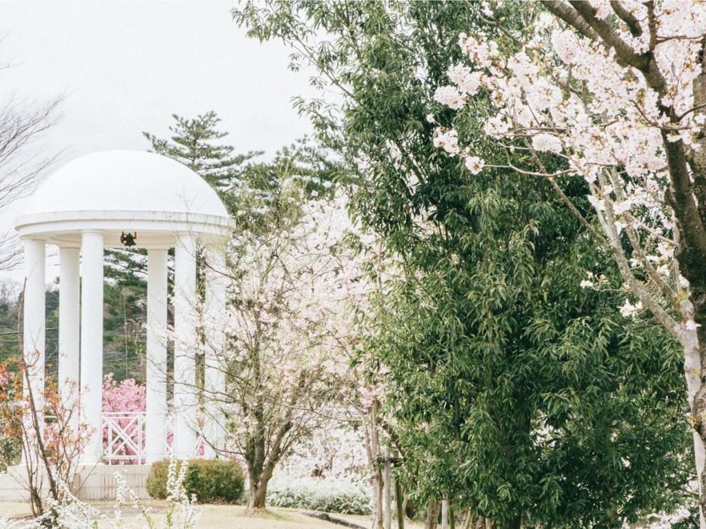 桜庭1200_cy-3490