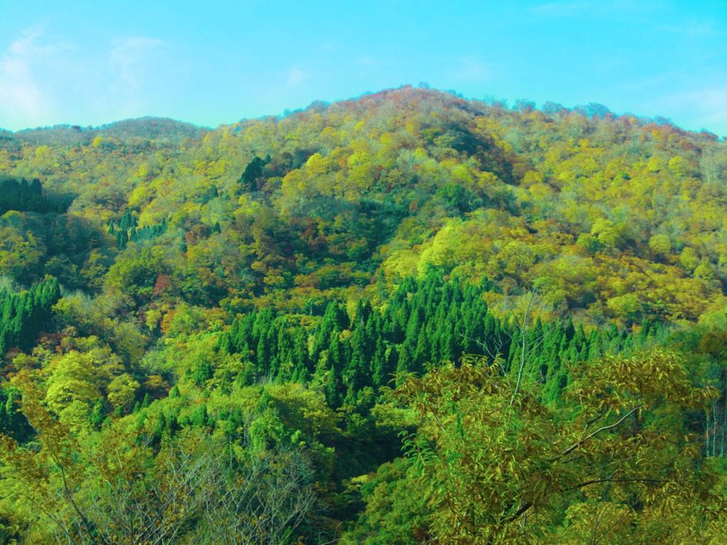 医王山山開きIMG_2071