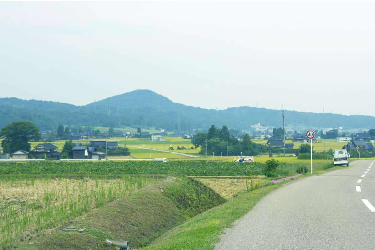 砺波平野の道
