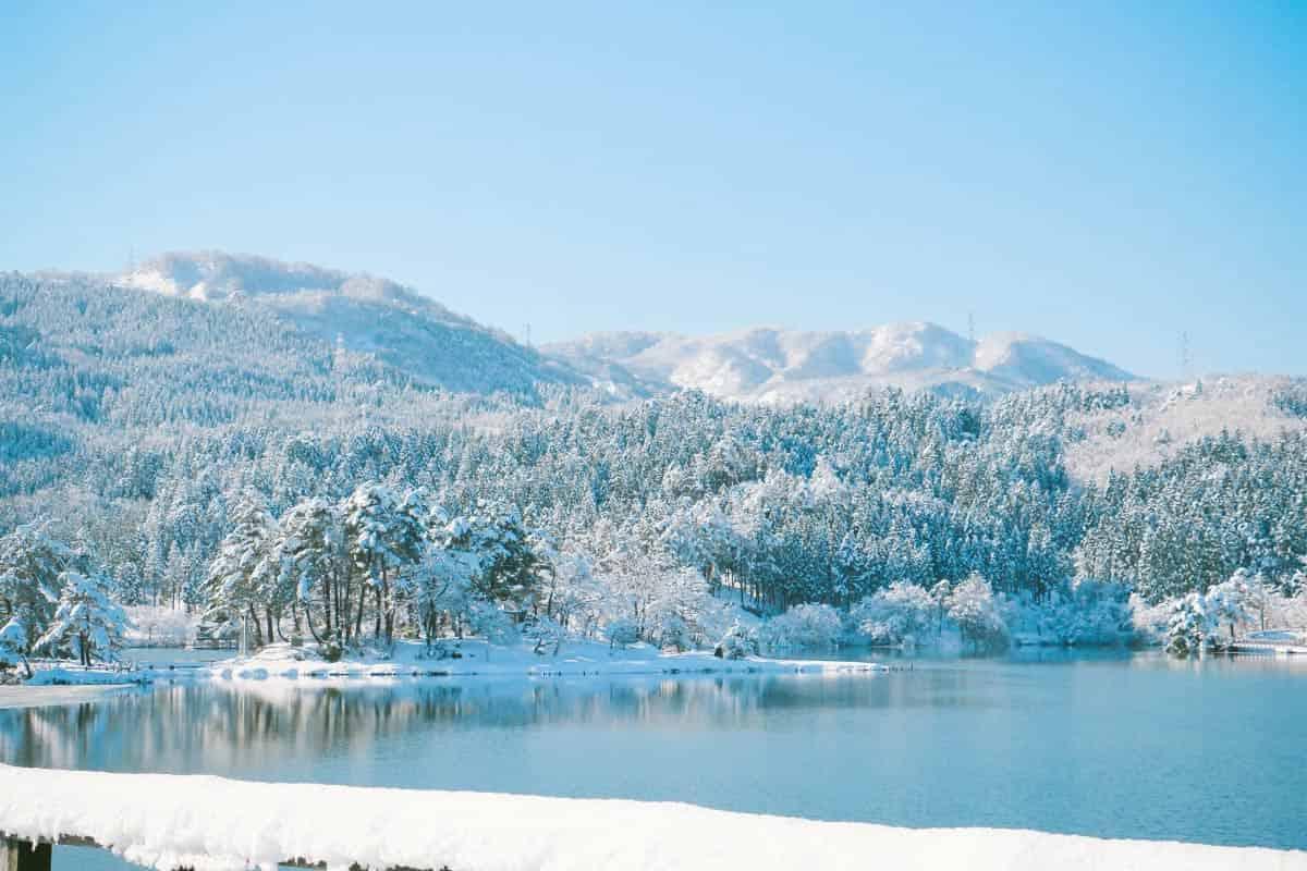 雪の桜ヶ池