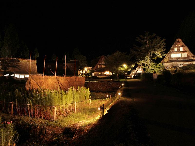 """相倉""""秋のはさがけ""""ライトアップ1440379800_800"""