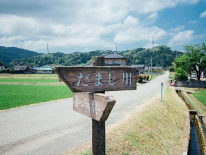 だまし川cy160610-4400