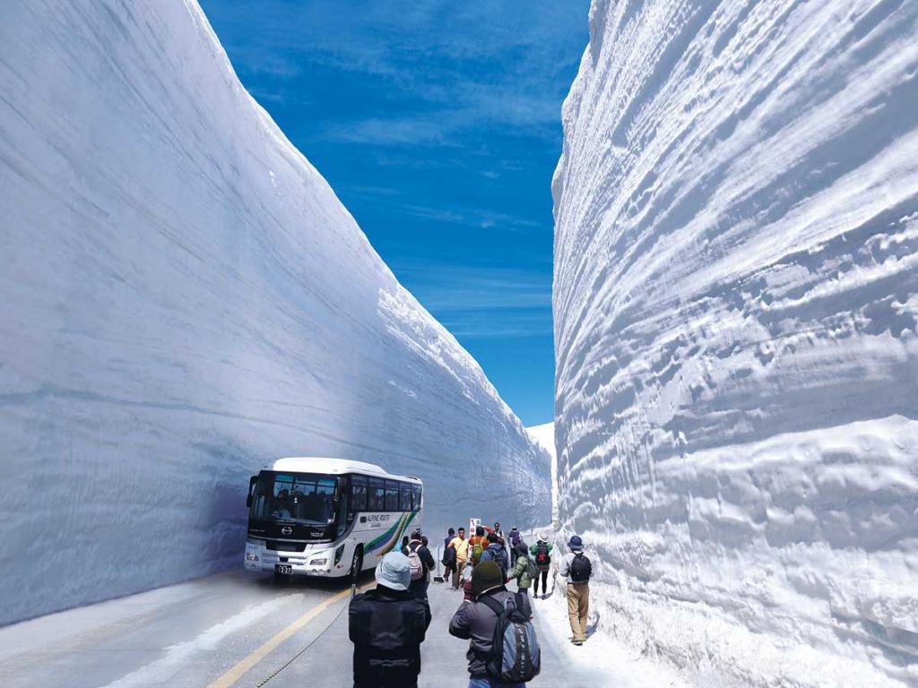 雪の大谷フェスティバル