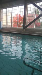 プールから見える紅葉