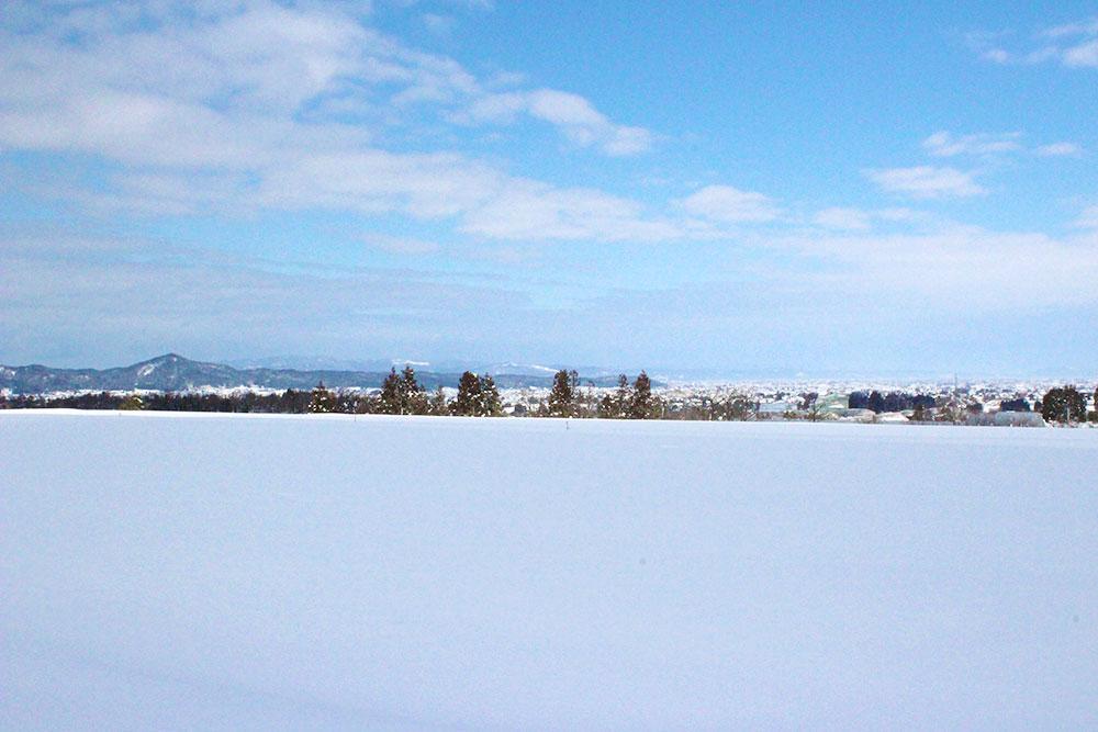 雪畑IMG_9645