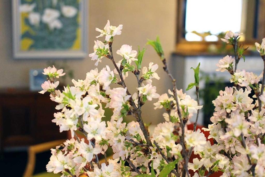 桜ロビーIMG_3629